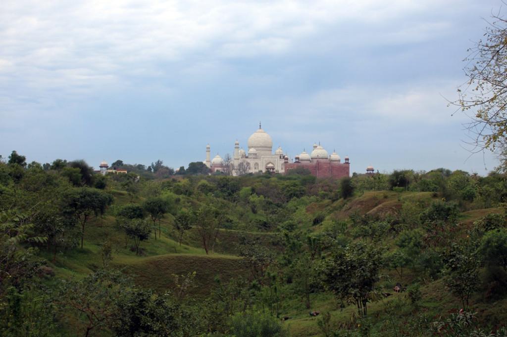 Taj Nature Walk