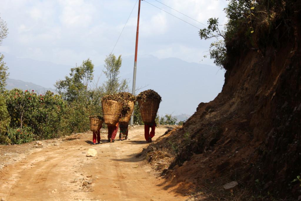 Genç ve yaşlı Nepalli kadınlar